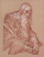 Gandalf in Moria - Contemplation by DonatoArts