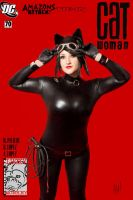 Catwoman Vol 3 #70 by Pokypandas