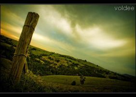 The Watcher by voldee