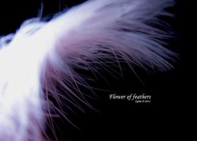 Flower of feathers by Epheme