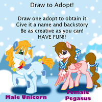 Draw To Adopt II by Sarahostervig