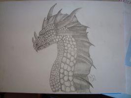 Dragon by Zoey-01