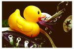 Ducky Out To Play by WithinIllusion