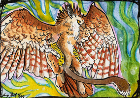 Gryph by SunStateGalleries