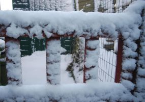 Snow Gate by moonhare77