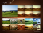 Toasted Photoshop Actions by elestrial