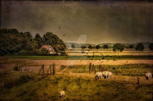 Dutch Countryside by Flash-and-Flair