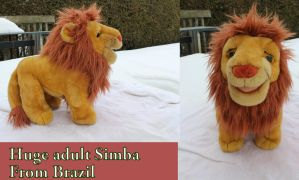 Huge Adult Simba from Brazil by Laurel-Lion