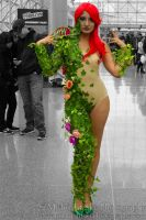 Poison Ivy cosplay by MidnightSkyPhoto