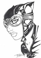 M.I.A Catwoman by KidNotorious