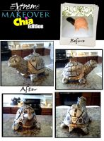 Extreme Make-over: Chia Edition (Steampunk Turtle) by FairlyOddChick91