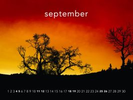 Plant trees - September by aaron4evr
