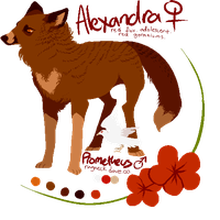alexandra reference by edelilah