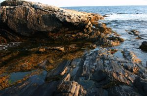 Rocky Coast by NycterisA