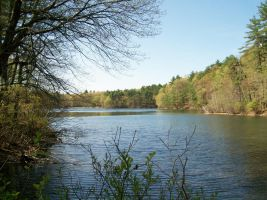 Across Walden Pond by panspacular