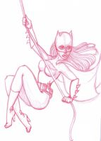 "Barbera ""Batgirl"" Gordon wip by Candylands"