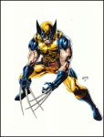 Wolverine by orphanshadow