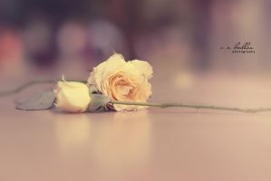 How you left me broken... by badhon
