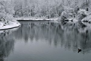snowy river by contemporaryhart