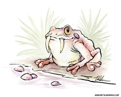 Sabertoothed Toad by ursulav