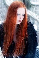 Shades of Winter I by Nightshadow-PhotoArt