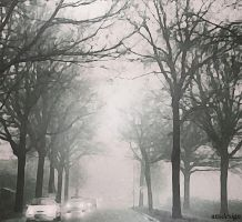 Living in a foggy world... by ansdesign