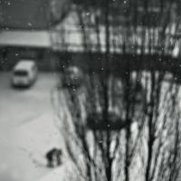 slow in snow by OnurY