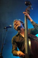 chris wood bass player by thumbless