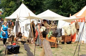 Castlefest 2015 093 by pagan-live-style