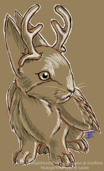 Daily Drawing Day 140 Realistic Jackalope by MidnightHuntingWolf