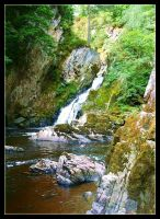 Conwy Falls and Glen by Forestina-Fotos