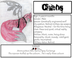 Chaos Ref Sheet by ImmortalShande