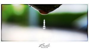 Water Drop by photogenic-art