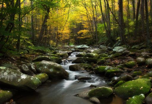 Golden Hour in the Smokies by ChadRouthier