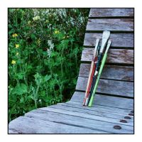 2015-201 Paint brushes on the bench by pearwood