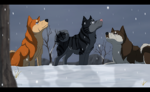 Ginga - First Winter by WyldeElyn