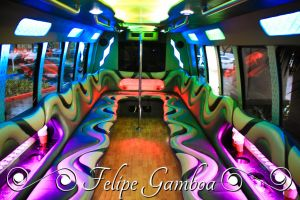 Party Bus #2 by anafusion