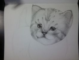 Kitty Cat .::WIP::. by Del-Hee-Cious