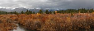 Placerville fall colors marsh by eRality