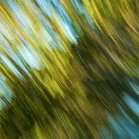 Colour and Movement II by DrewHopper