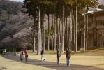 golden time at Hakone by Rikitza