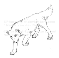 Wolf by pharao-girl