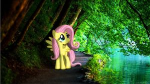 Fluttershy in the Forest [PIRL] by colorfulBrony