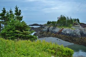 Campobello Bay by Golden-star-fall