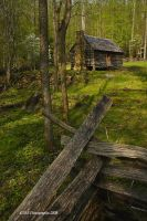 Spring Cabin Roaring Fork by TRBPhotographyLLC
