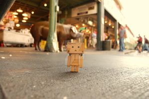 Danbo at Pike Place Market ... by Yuffie1972
