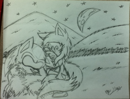 Moonlight Shadow - Sonic TW And Ilse TW by SonicTHW93