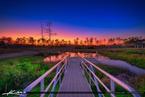 Cypress-Creek-South-Natural-Area-Sunset-Jupiter-Fl by CaptainKimo