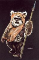Ewok by Ninjacompany