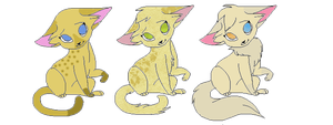 CAT ADOPTS -OPEN- by Bay-fire